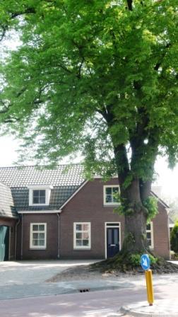 De (sterk verbouwde) woning in Erp, waar Willem en Judith hebben gewoond.